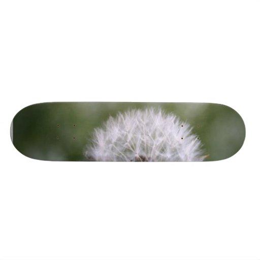 Picture Of Dandelion Skate Decks