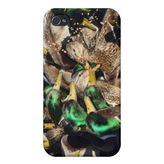 Picture of Ducks in a Crowd iPhone 4 Cover