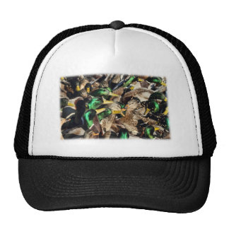Picture of Ducks in a Crowd Mesh Hats