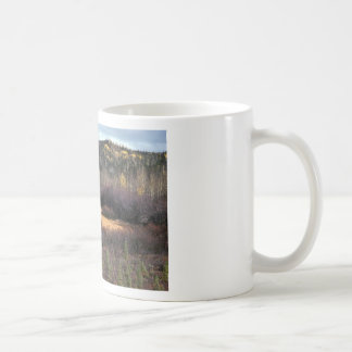PICTURE OF FALL IN MOUNTAINS CLASSIC WHITE COFFEE MUG