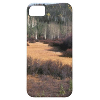 PICTURE OF FALL IN MOUNTAINS iPhone SE/5/5s CASE