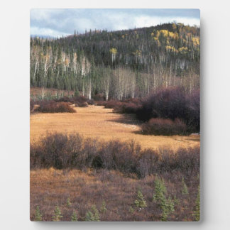 PICTURE OF FALL IN MOUNTAINS PLAQUE
