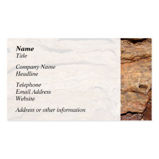 Picture of Fossilized Wood Business Card Template