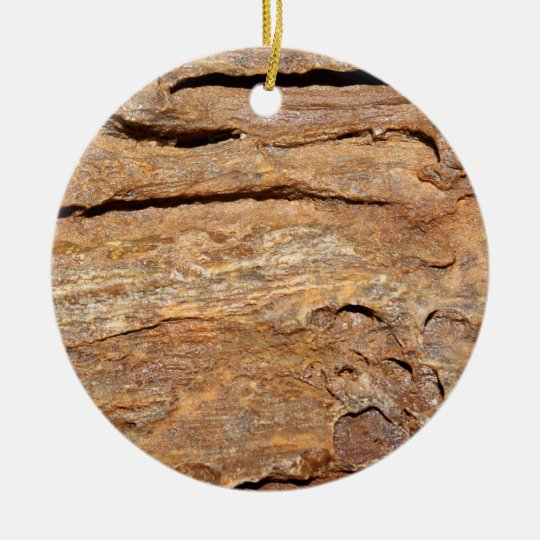 Picture of Fossilized Wood. Ceramic Ornament
