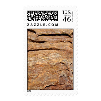 Picture of Fossilized Wood. Postage Stamp
