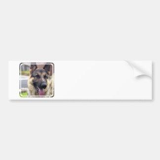 Picture of German Shepherd  Bumper Stickers