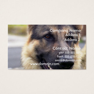 Picture of German Shepherd Business Card