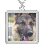 Picture of German Shepherd Business Card Necklace