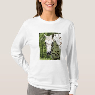 Picture of Horse on Tshirt,Appaloosa Portrait T-Shirt