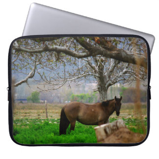 Picture of Horses - A Horse On The Field Laptop Sleeve