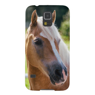 Picture Of Horses - A Horse With Beautiful Mane Case For Galaxy S5