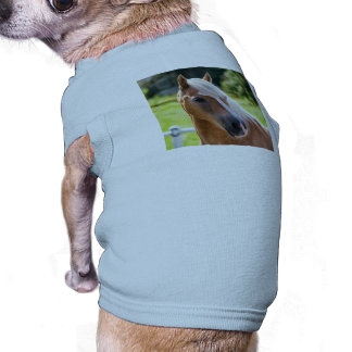 Picture of Horses - A horse with beautiful mane Pet Tee
