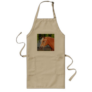 Picture Of Horses - A Horse With Beautiful Mane Long Apron