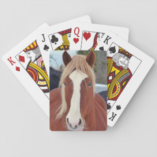 Picture of Horses - A horse with beautiful mane Poker Cards