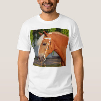 Picture Of Horses - A Horse With Beautiful Mane Tee Shirts