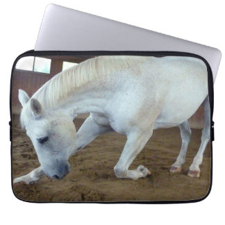 Picture of Horses - A Trained Horse Saluting Computer Sleeve