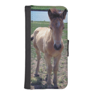 Picture of Horses - A Young Horse Foal Standing iPhone SE/5/5s Wallet