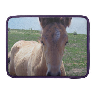 Picture of Horses - A Young Horse Foal Standing Sleeves For MacBooks