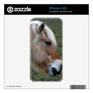 Picture of Horses - A Young Wild Horse Decal For iPhone 4
