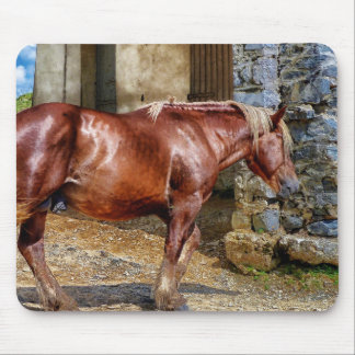 Picture of Horses - Brown Horse Near Old Building Mouse Pad