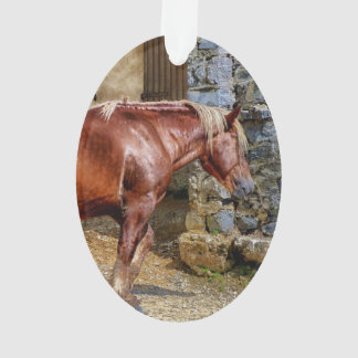 Picture of Horses - Brown Horse Near Old Building Ornament