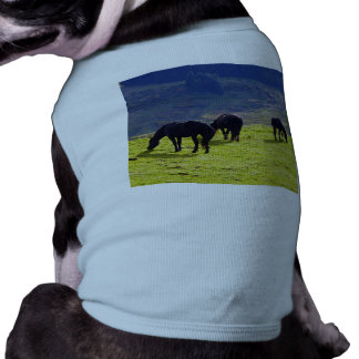 Picture Of Horses Grazing On The Field Dog T-shirt