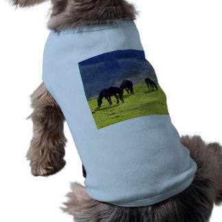 Picture Of Horses Grazing On The Field Pet Shirt