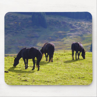 Picture Of Horses Grazing On The Field Mouse Pad