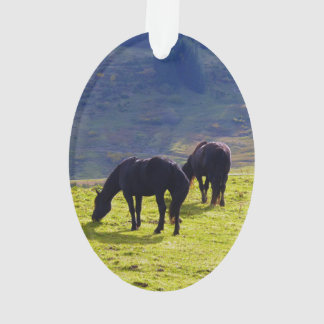 Picture Of Horses Grazing On The Field Ornament