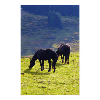 Picture Of Horses Grazing On The Field Personalized Stationery