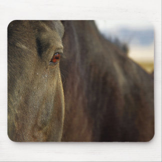 Picture of Horses -The Eye Of A Strong Horse Mouse Pad