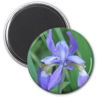 Picture of Iris Round Magnet Refrigerator Magnets