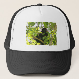 Picture of Monkey Eating Trucker Hat