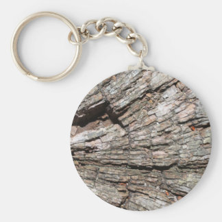 Picture of Old Tree Stump Wood Key Chain