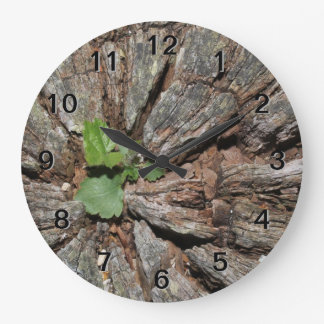 Picture of Old Wood with Plant. Clock
