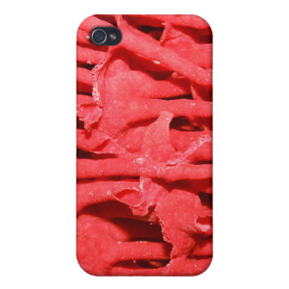 Picture of Red Organ Pipe Coral. iPhone 4 Cases