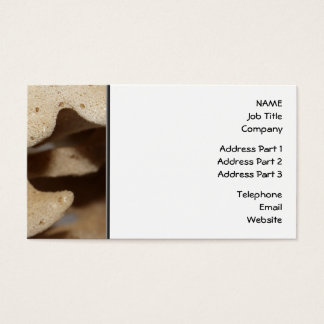 Picture of Sea Sponge. Business Card