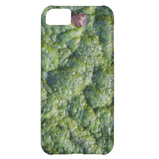 Picture of Slime. iPhone 5C Covers