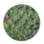 Picture of Slime. Dart Boards
