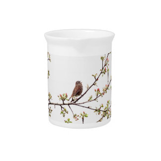 Picture of Sparrow Singing in Flowering Tree Beverage Pitcher