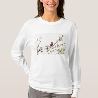 Picture of Sparrow Singing in Flowering Tree T-Shirt