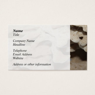 Picture of Sponge. Business Card