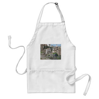 Picture of the Roman Forum Adult Apron