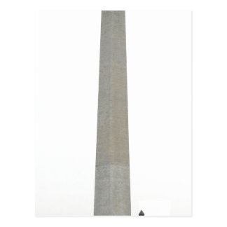 Picture of the Washington Monument Taken by Raul65 Postcard