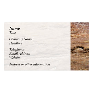 Picture of Wood Fossil Business Card Template