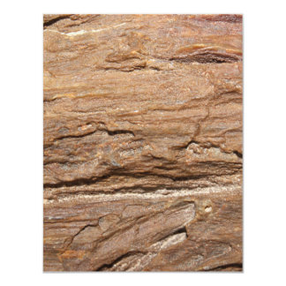 Picture of Wood Fossil. Card