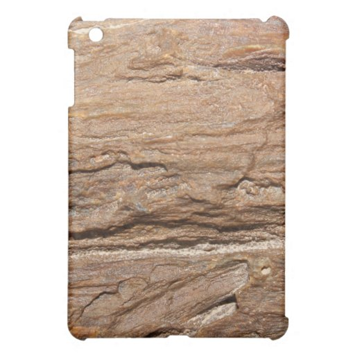 Picture of Wood Fossil. Cover For The iPad Mini