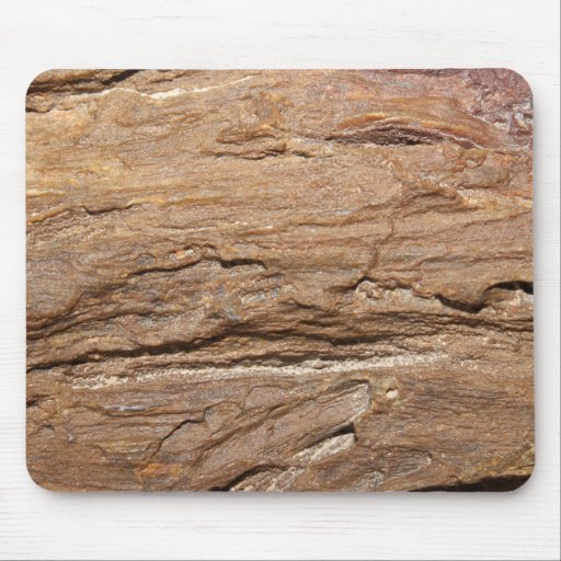 Picture of Wood Fossil. Mouse Pad