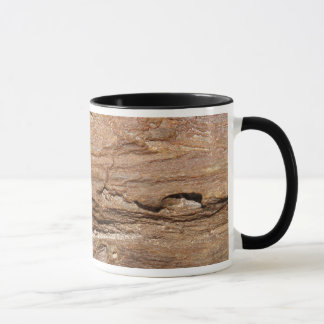 Picture of Wood Fossil. Mug