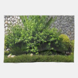 Picture Perfect Green : EverGreen AWGP Temple Wall Towel